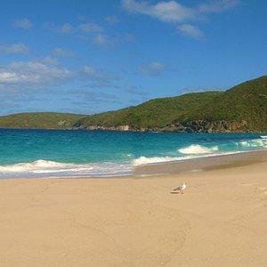 Shelley Beach - Southwest Australia