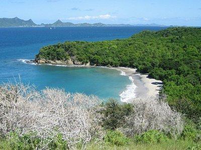 anse la roche beach