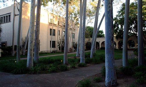 Cal Tech Campus #2