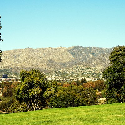 View from Forest Lawn