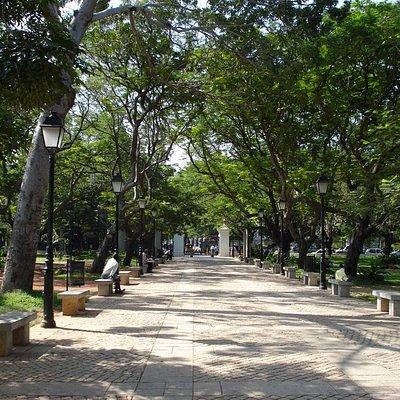 Pondicherry - Bharati Park, uno dei viali