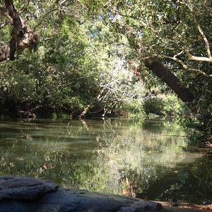 Nisargadhama near Madikeri