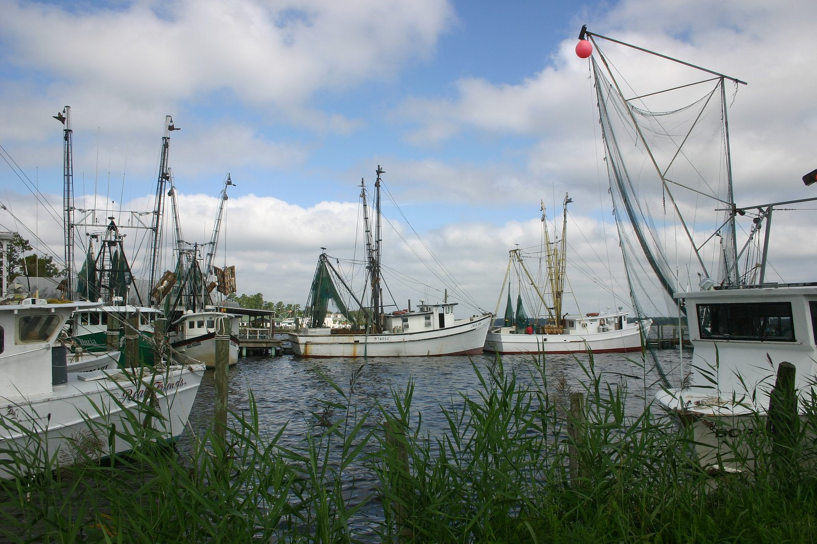 Shrimp boats by Everett & Sons seafood.