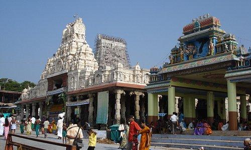 Tiruchendur - Murugan Temple