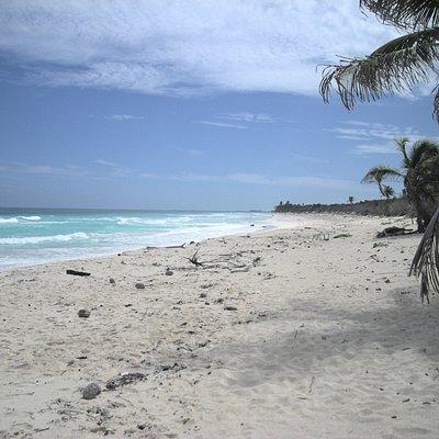 beach on Boca Paila Peninsula