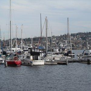 waterfront photo