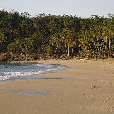 Eastern side of Playa Morón