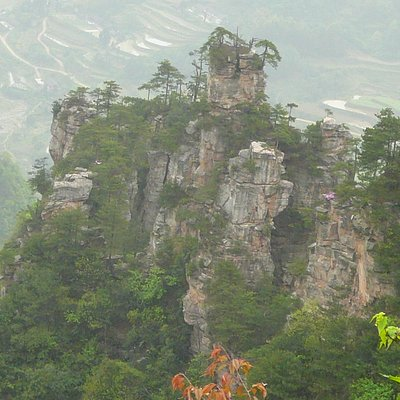 A View from Tianzi
