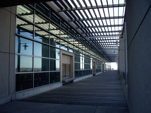 Outdoor Terrace of the Center - Leads to the Ocean
