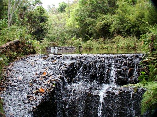 Waterfall – Cachoeira - by João Paulo Gavidia