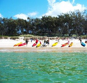 Kayaking Balunjali Gold Coast