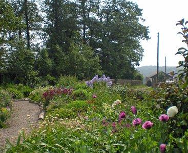 Part of the Palette Garden