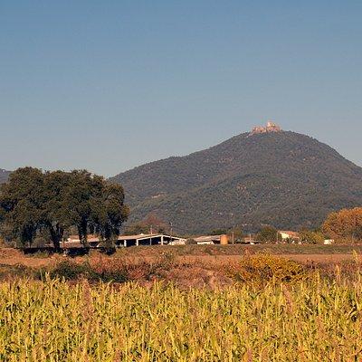 Castell de Montsoriu, 5km southeast of Arbucies
