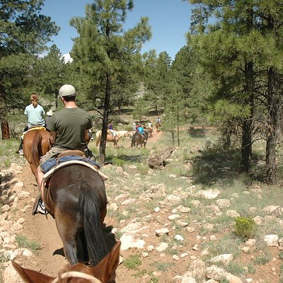 Trail riding at Apache Stables