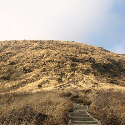登山道途中より山頂方面を仰ぎ見る
