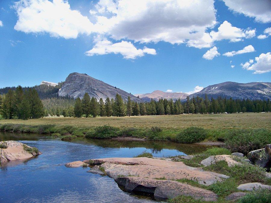TUOLUMNE MEADOWS CAMPGROUND - Reviews (Yosemite National Park, CA) -  Tripadvisor