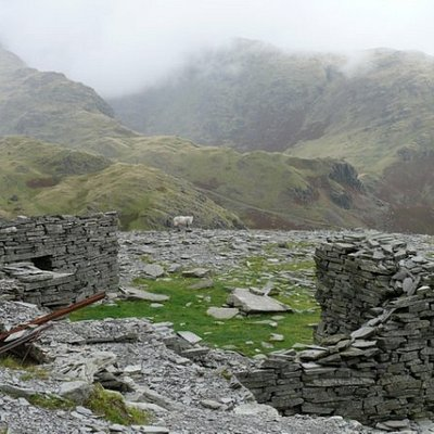 Old Slate Mine Building with another sheep for Ian