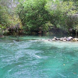 Weeki Wache River