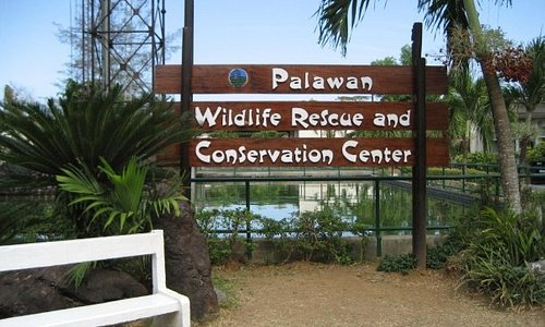 Day 1 - City TourPalawan Wildlife Rescue and Conservation Centerformerly known only as the C