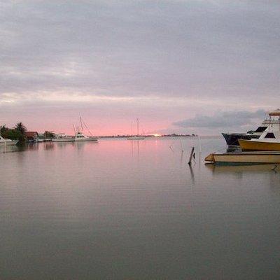 Luminous Lagoon...
