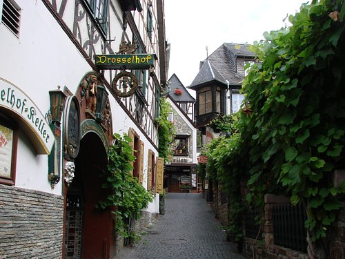 Look at the vines and lovely taverns