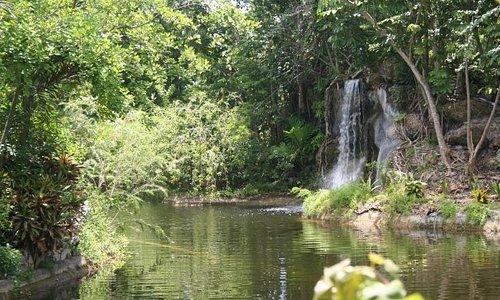 Garden of the GrovesFreeport Grand Bahama
