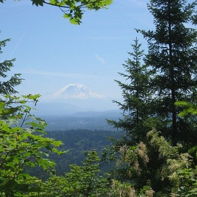 View of Mt. Ranier at some point on the trail.