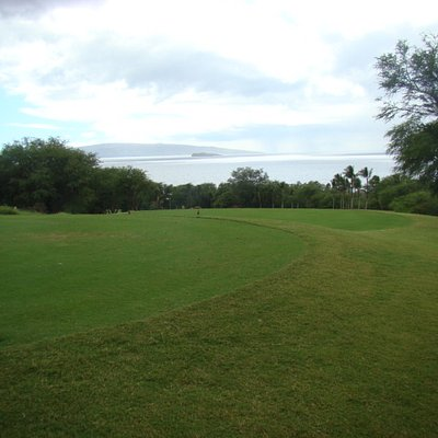 Gold Course view