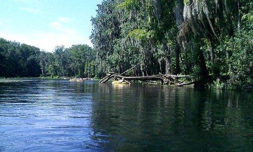 Beautiful Ichetucknee River