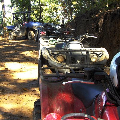 The ATVs in line