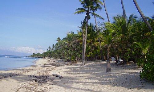 Tubod Marine Sanctuary at front of Coco Grove resort, Siquijor, Visayas, Philippines