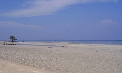 Tulapos Marine Sanctuary, Siquijor Island, Visayas, Philippines