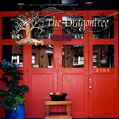 Welcome to The Dragontree Spa