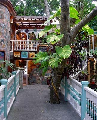 Enjoy the tropical ambiance of Mongoose Junction