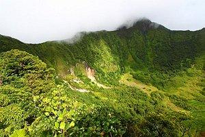 The Crater below Mount Liamuiga.
