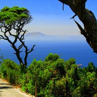 a távolban Afrika partjai you can see the distance the coasts of africa