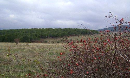Puebla de la Sierra, Sierra de Madrid