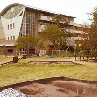 貝塚&博物館