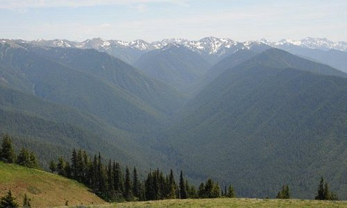 Olympic mountains from Hurricane Ridge at Olympic National Park.