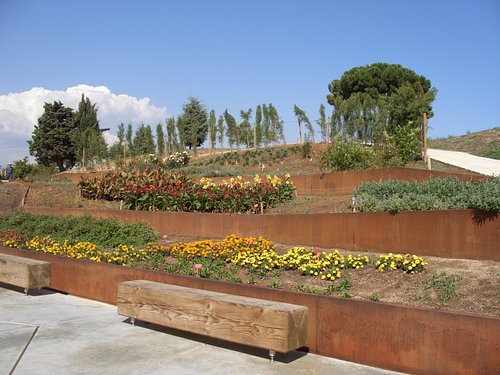 Planting in the California section
