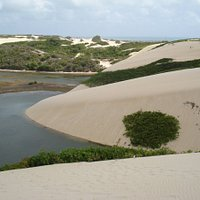Natal's DunesWhere: Natal - BrazilWhen: January - 2008