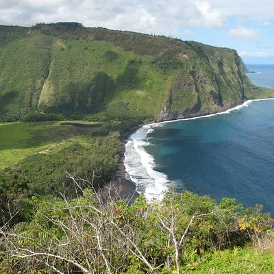 Waipi'o Valley from overlook (you can drive to here)