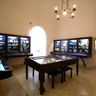 sala di paleontologia e geologia