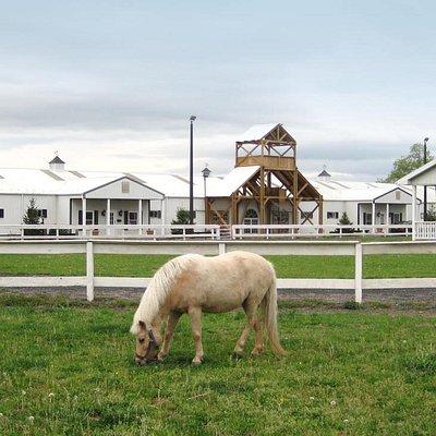 Hermitage Hill Farm