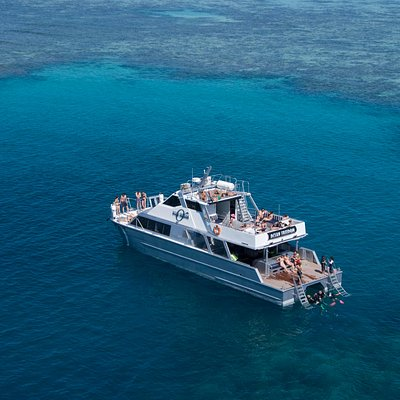 Outer Edge Upolu Reef - Ocean Freedom Tour