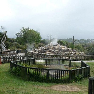 Kuirau Park Rotorua NZ