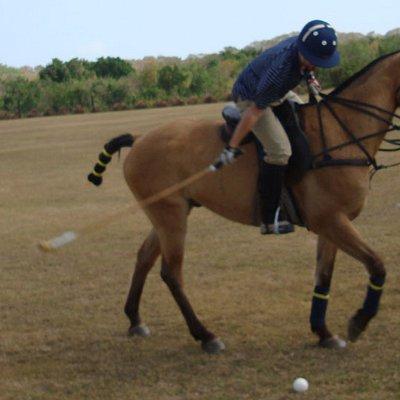Playing polo
