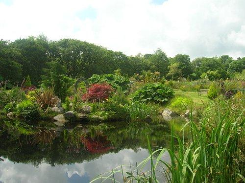 Northwood Water Gardens