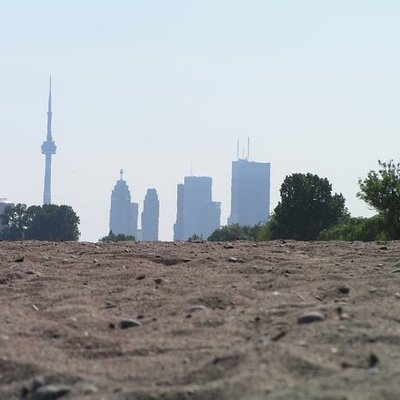 View from the Beaches to Downtown
