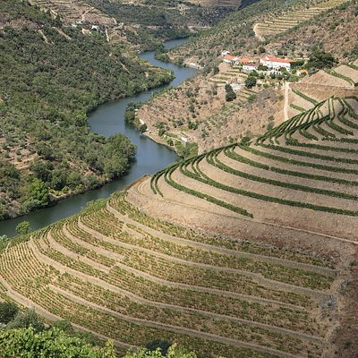 View of Quinta do Panascal